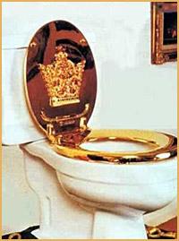 http://www.hovberg.se/resmi/tron_toalett.jpg